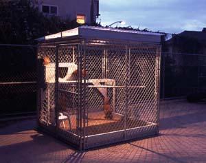 "Yutaka Kobayashi ""Chicken House and Eco-Art Project"""