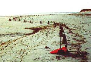 """High Tide to High Tide Starting at high tide, use a traffic cone to form and place sand cones long the high tide line until the next high tide clears the beach."""