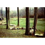 Stacking wood.1