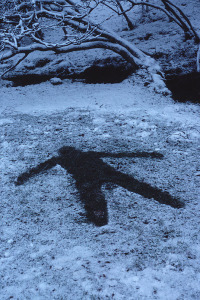 "Andy Goldsworthy's ""Snow Shadow"""