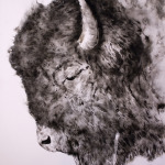 "Sheila Gallagher's ""Smoke Bison"""