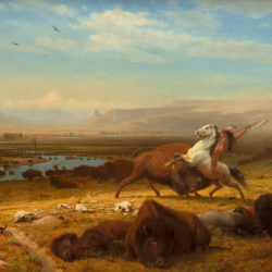 Albert Bierstadt (American, 1830 - 1902 ), The Last of the Buffalo, 1888, oil on canvas, Corcoran Collection (Gift of Mary Stewart Bierstadt [Mrs. Albert Bierstadt]) 2014.79.5